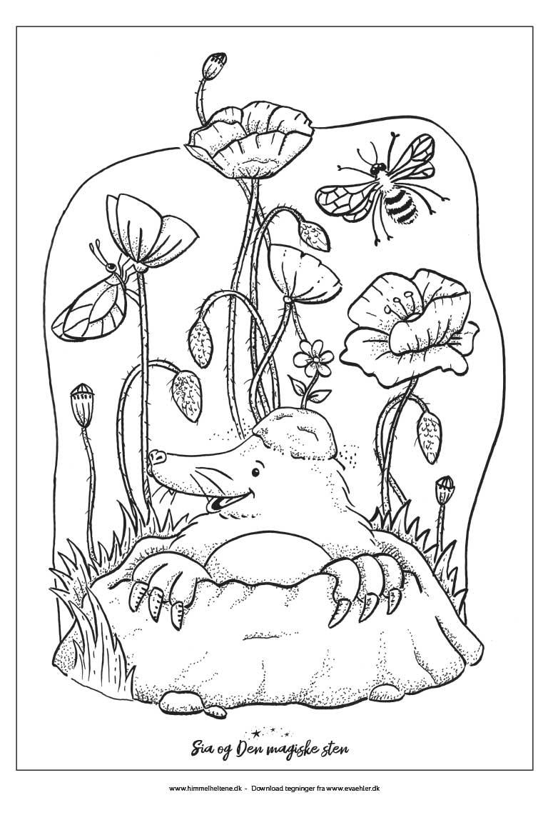 03-tegning-malebog-sia-og-den-magiske-sten
